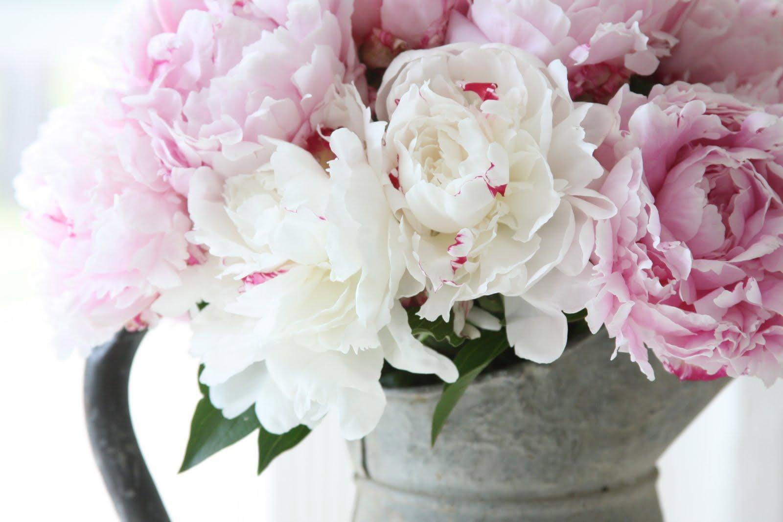 Букет розовых и белых пионов