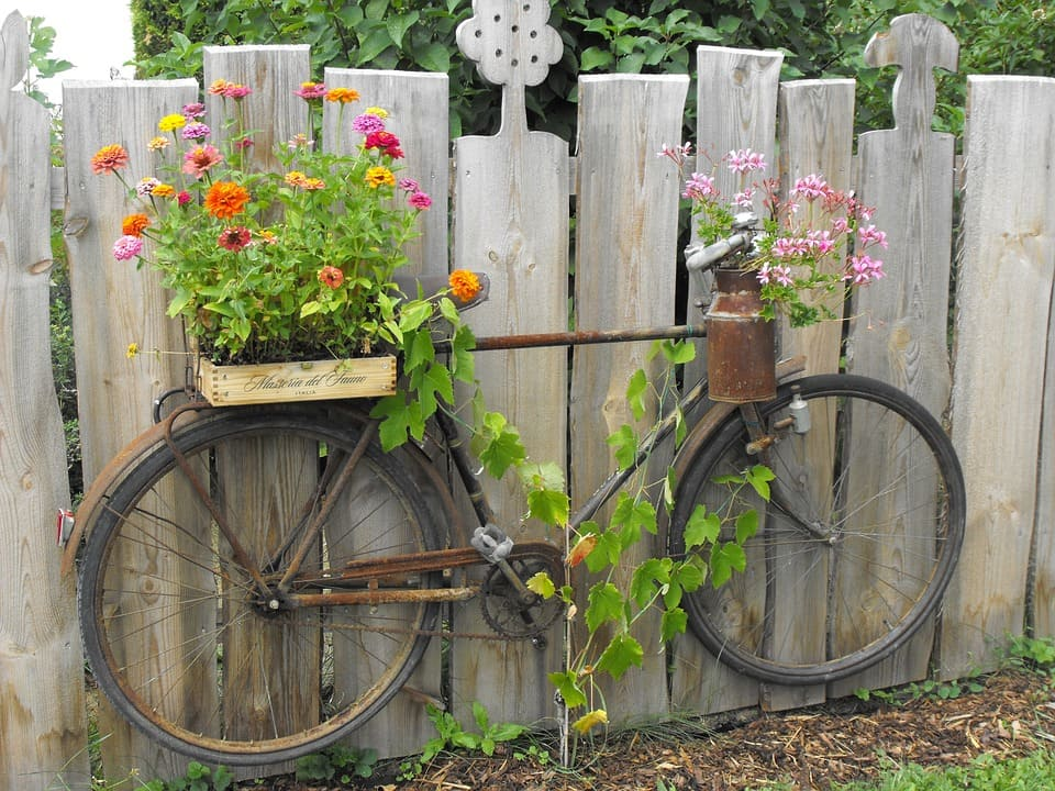 Цветы и велосипед